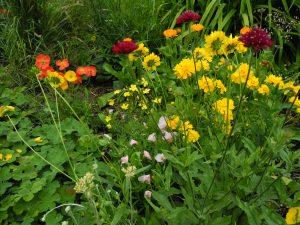 Gartenarbeit-Erdmuthe_Weisser
