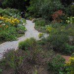 Gartenimpressionen - Erdmuthe Weißer