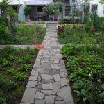 Gartenimpressionen - Erdmuthe_Weisser